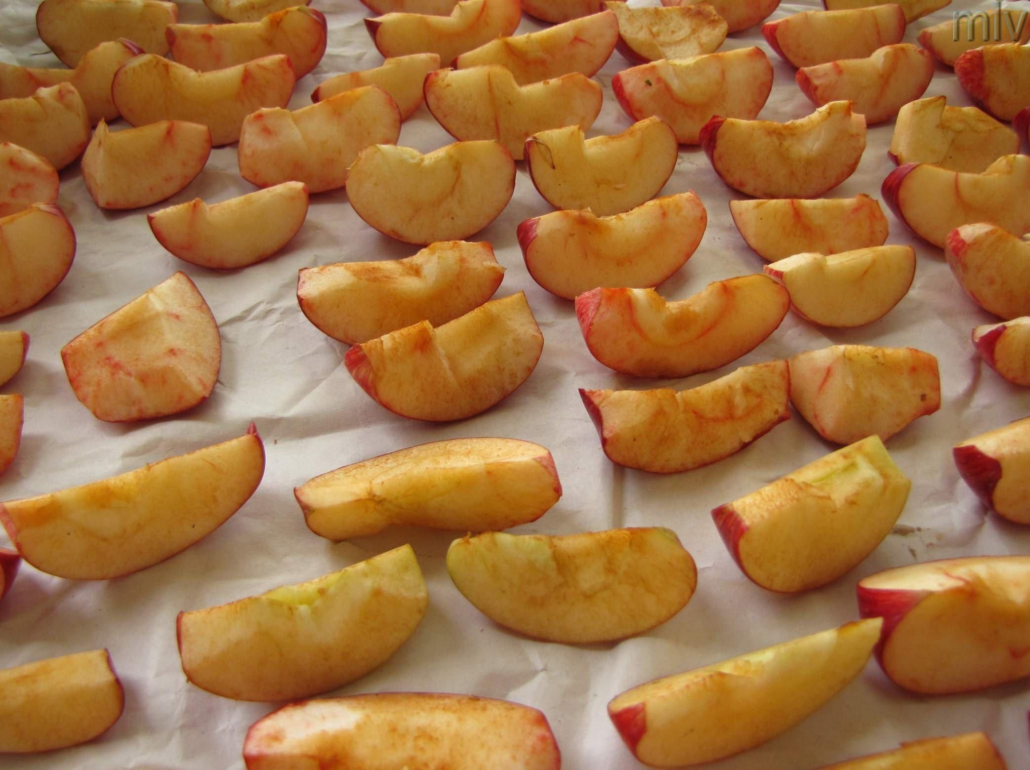 яблучні ряди