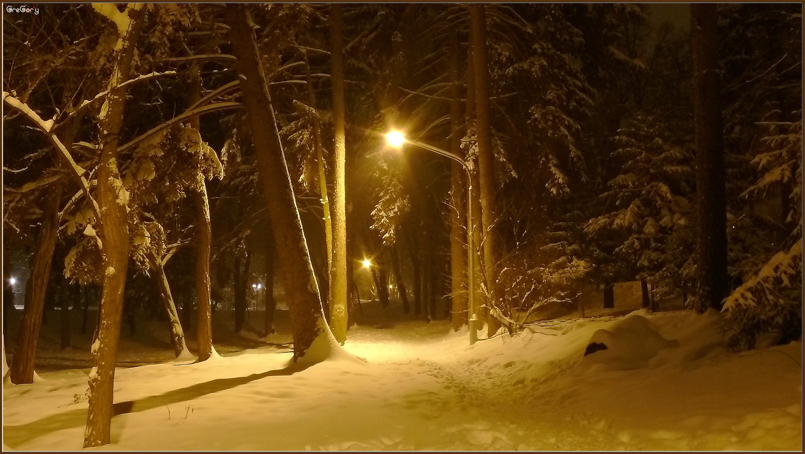 Парк у м. Вінниці / Park in Vinnytsya05.02.2012 19:28:26