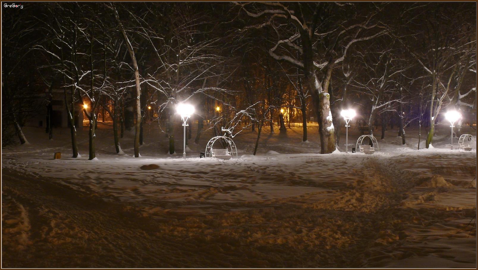 Парк у м. Вінниці / Park in Vinnytsya * 05.02.2012 19:33:12