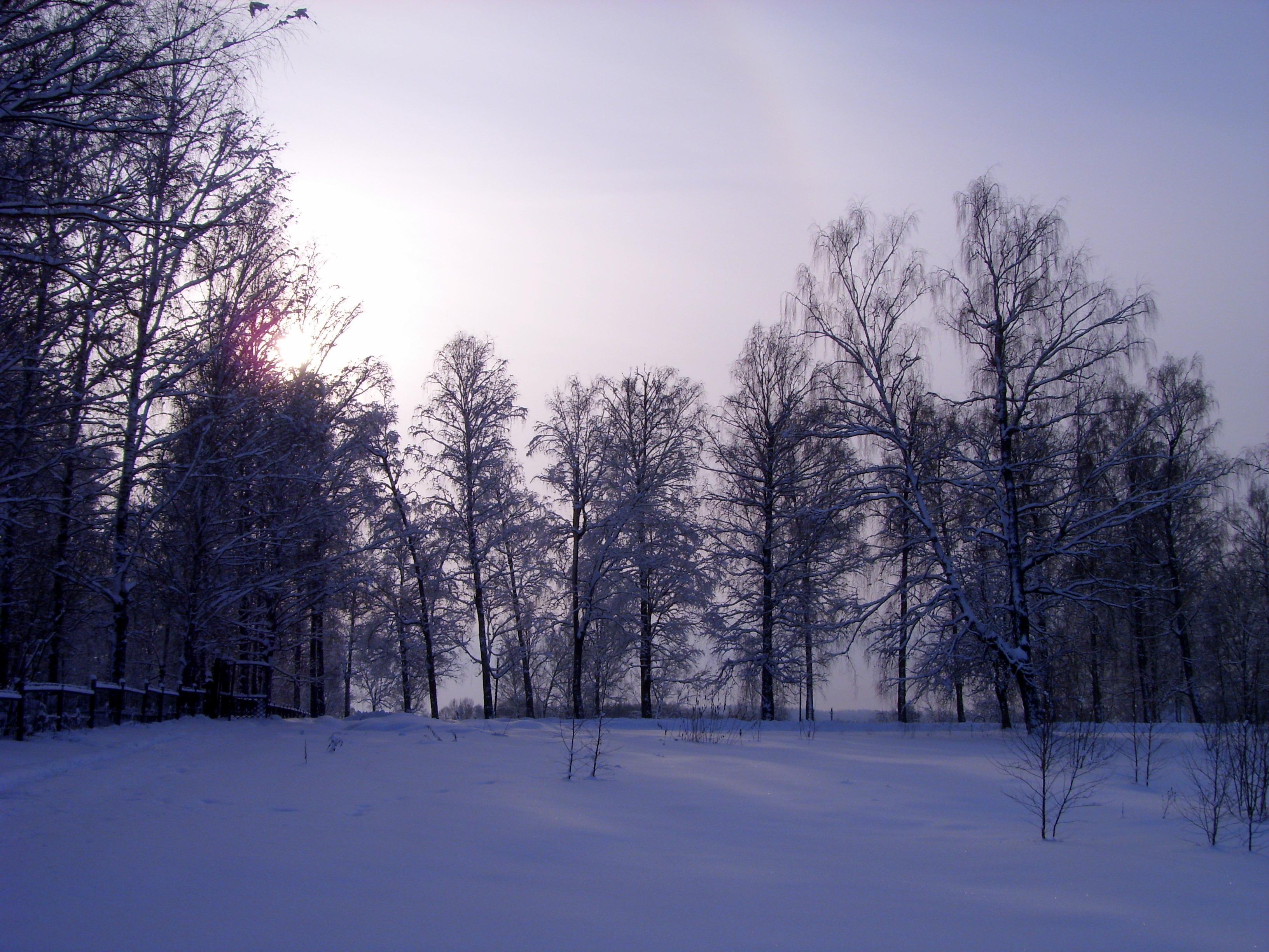 Мороз и солнце-день чудесный