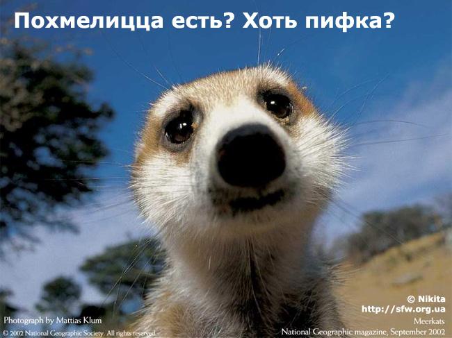 БГААААА)))))