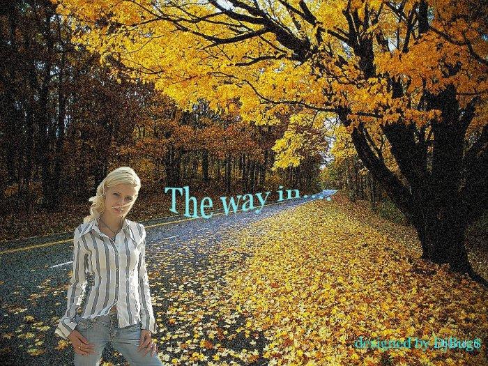 Воть ещё одна работка!Чёт мну на осень потянуло!Вот и ета девушка!: http://photo.bigmir.net/album/1047503/
