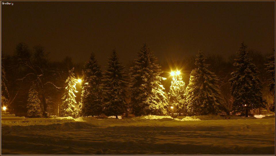Парк у м. Вінниці / Park in Vinnytsya * 05.02.2012 20:03:36