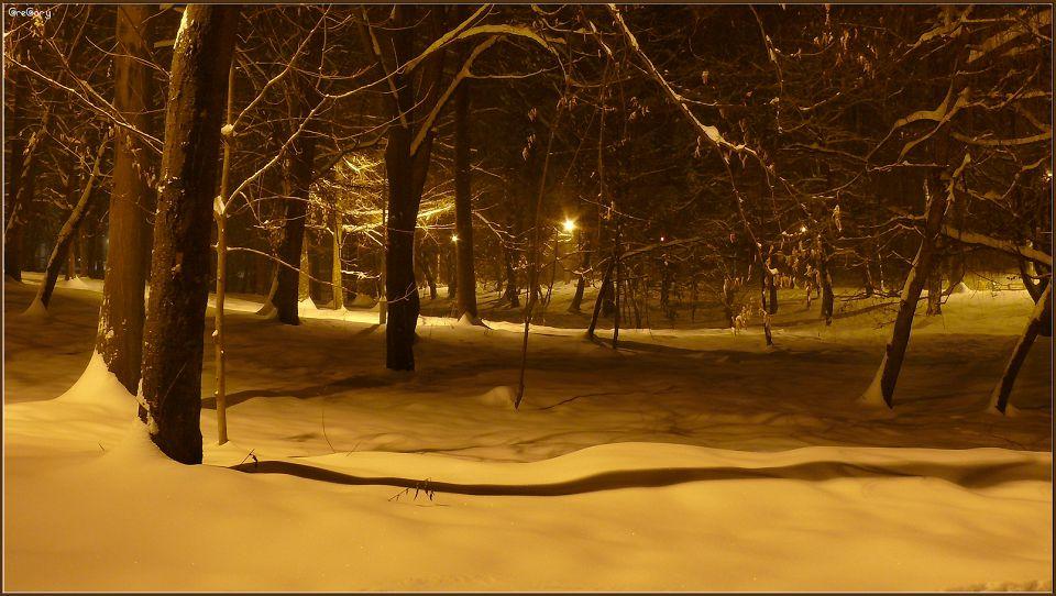 Парк у м. Вінниці / Park in Vinnytsya * 05.02.2012 19:50:5