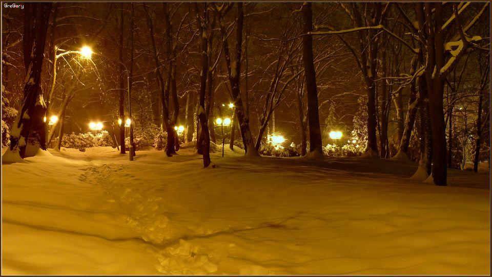 Парк у м. Вінниці / Park in Vinnytsya05.02.2012 19:59:23