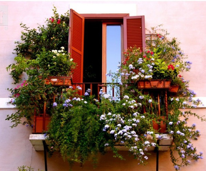Балкона с цветами.