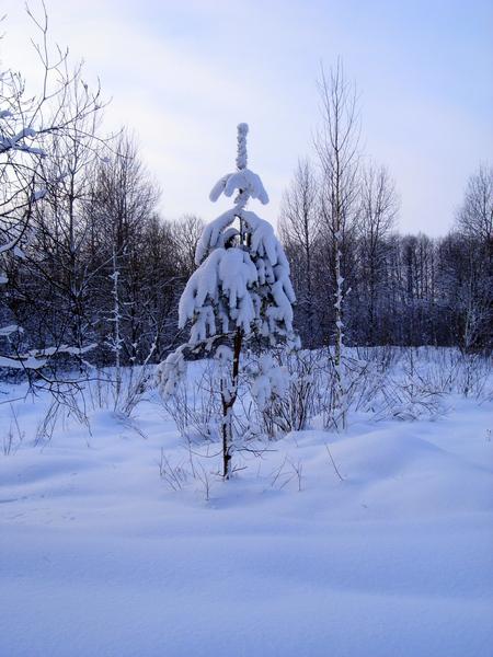 Юной ёлочки зимний наряд