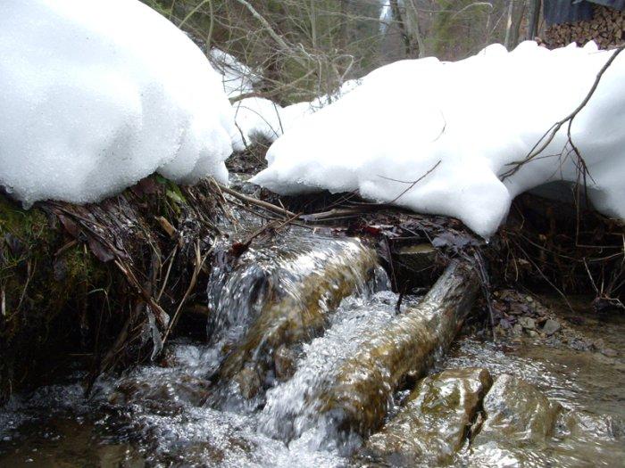 карпатские ручьи