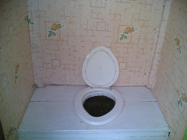 Как в деревне туалет сделать
