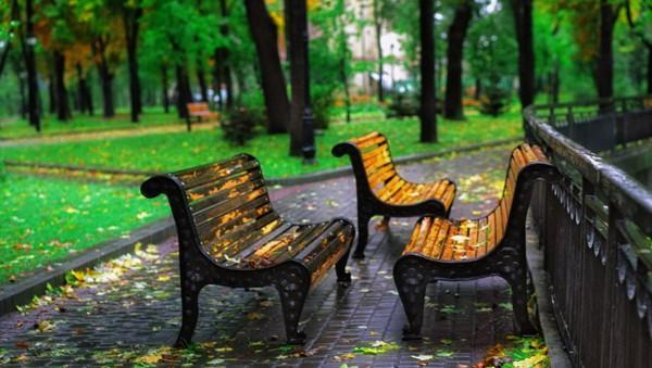 осень в Мариинском