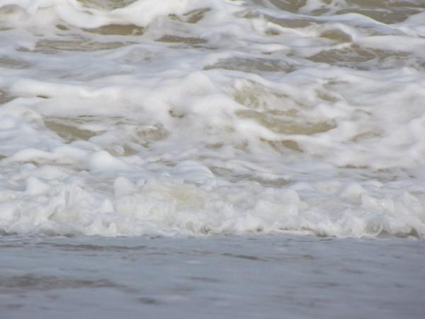 біле море