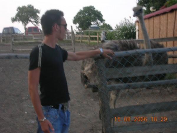Встреча со страусом на болгарской територии..BATU 2006!!!