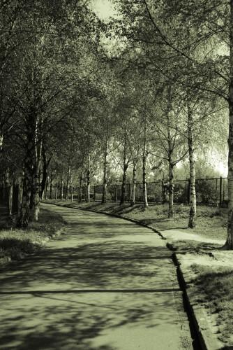 Національний Ботанічний сад ім.М.М.Гришка