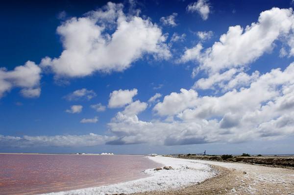 Путешествие к морю. Розовая вода