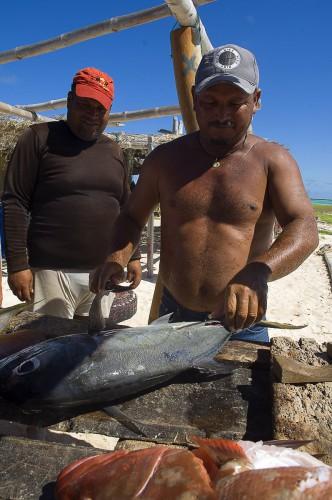 Путешествие к морю. Разделка рыбы