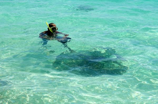 Путешествие к морю. Под водой