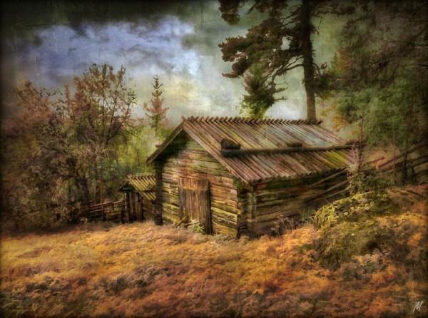 «У лесной опушки...»  (Фото к стихотворению Плещеева: http://dnevnik.bigmir.net/article/1074055/)