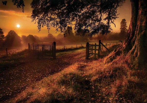 Начало теплого осеннего дня (из серии «Осень - рыжая подружка»)
