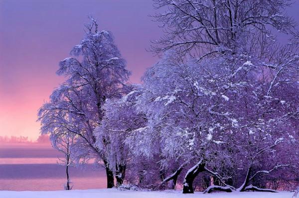 Тихое морозное утро