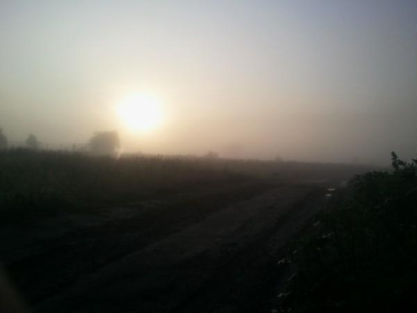 Эх, дороги, пыль да туман...