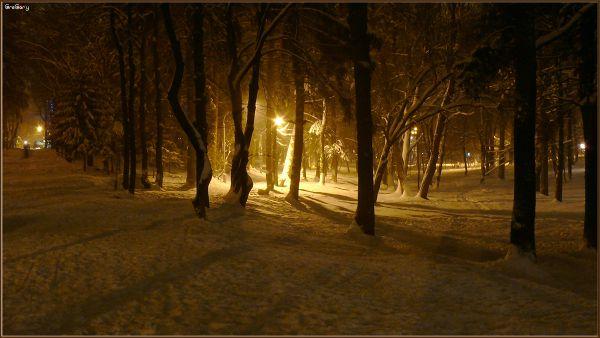 Парк у м. Вінниці / Park in Vinnytsya05.02.2012 19:31:30