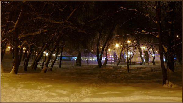Парк у м. Вінниці / Park in Vinnytsya * 05.02.2012 19:48:17