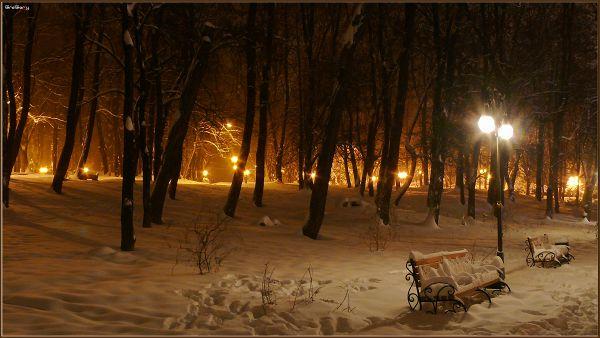 Парк у м. Вінниці / Park in Vinnytsya * 05.02.2012 19:53:2