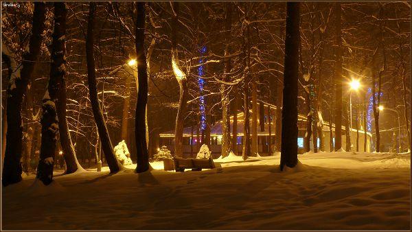 Парк у м. Вінниці / Park in Vinnytsya * 05.02.2012 19:57:51