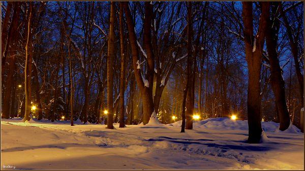 Парк у м. Вінниці / Park in Vinnytsya 18.02.2012 18:00:21