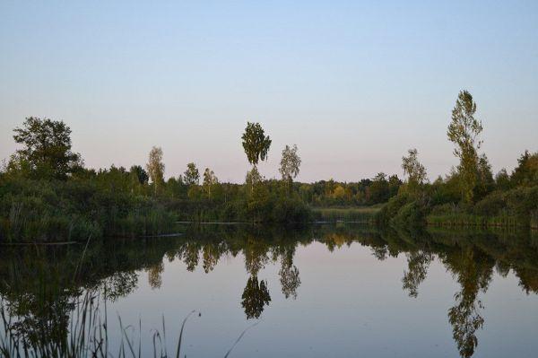 Загадочный Хмельницкий лес
