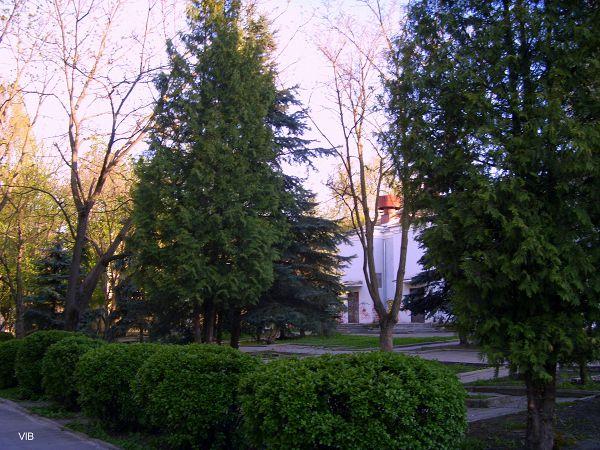 Сквер кинотеатра Родина