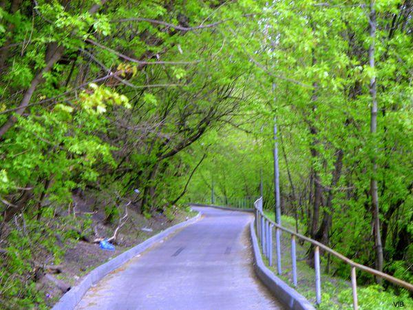 Дорога на Покровскую гору