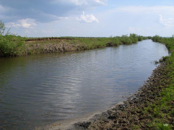 Вдаль бежит река
