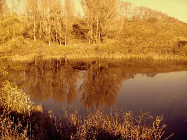 Багряный берег