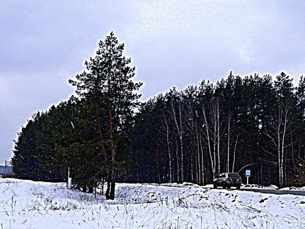 Дорога в снегопад