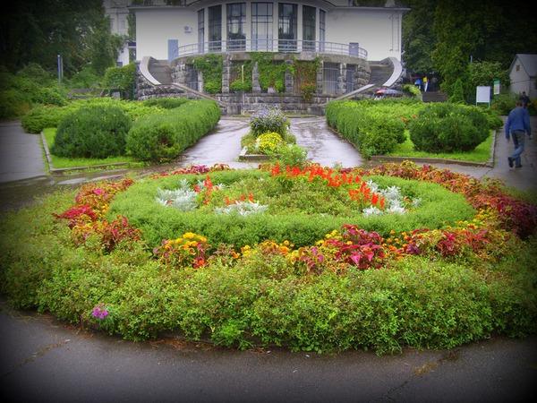 В старом ботаническом саду Киева