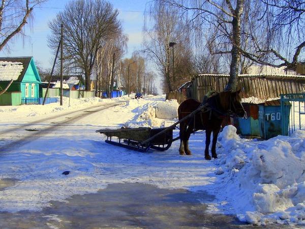 Припаркованый конь