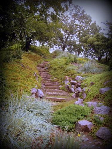 Лестница среди камней