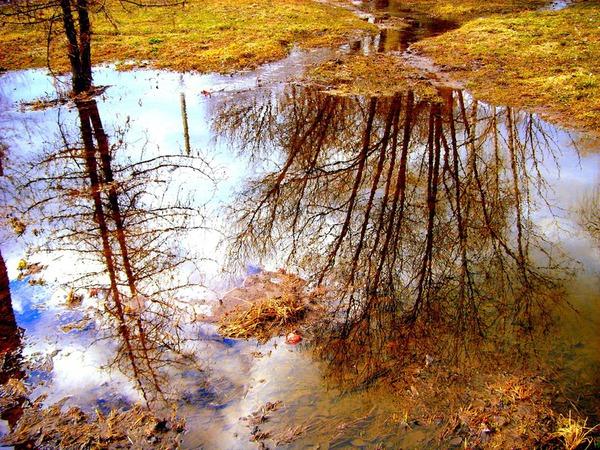 Водные весенние пейзажи