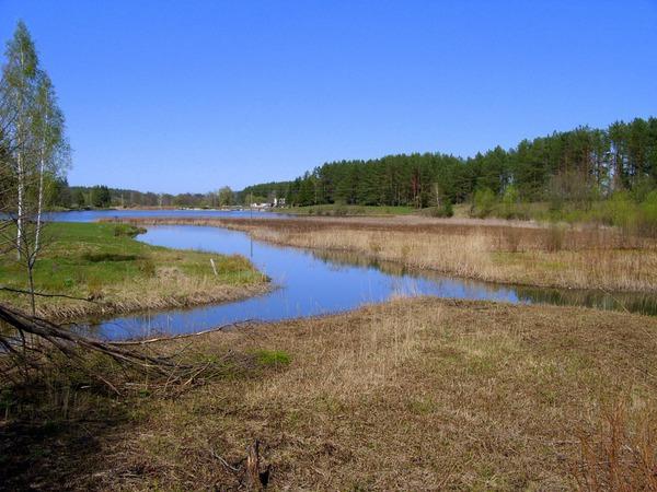 Небольшая река Тростянка