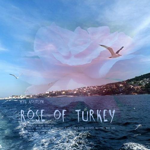 Ilya Golitsyn Rose of Turkey