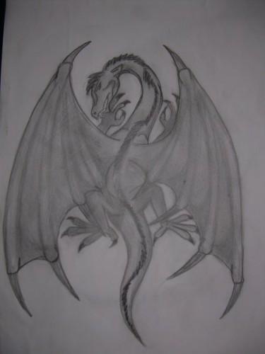очень люблю драконов