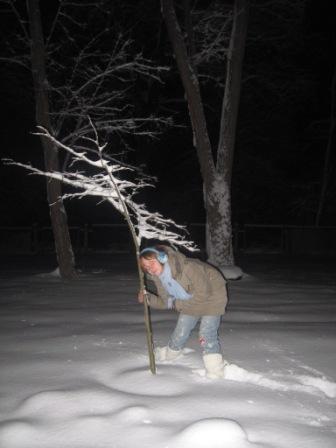 я під дерево)))