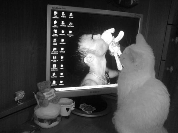 """Special 4 """"Angel_Tattoo"""" (my kitty love U too)"""