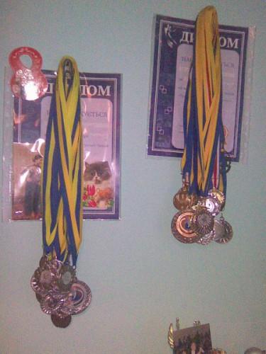 Мои медали
