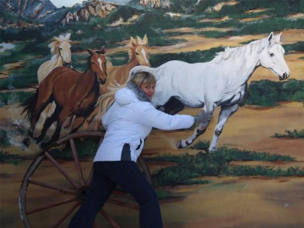 ....коня на скаку остановит....