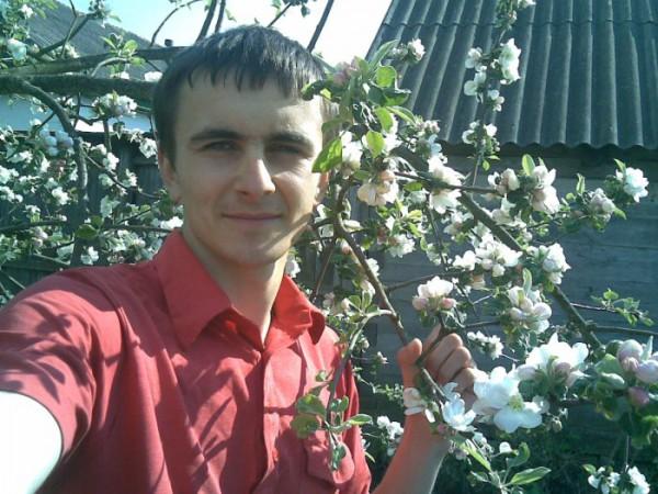 Яблуня в садку