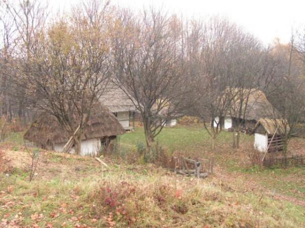 небольшой дворик со всем обилием хозяйственных построек. регион уже не помню