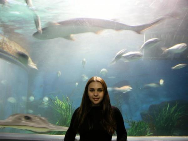 Melbourne aquarium 8 of May 2006