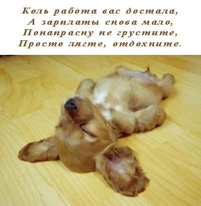 идеал работы)))
